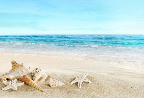 spiaggia-e-conchiglie