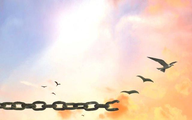 Libertà di essere